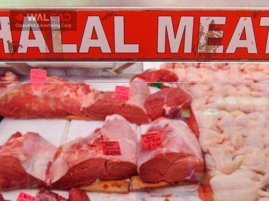 گوشت گوسفند محلی با ذبح حلال