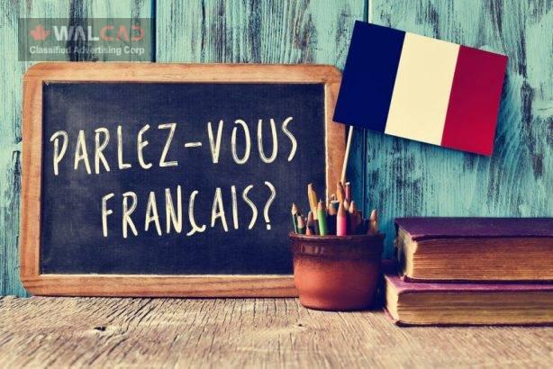 تدریس فرانسه