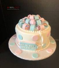 پخت و تزیین انواع کیک